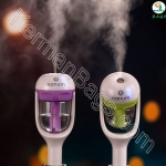 Cold air freshener and car air freshener