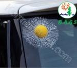 برچسب شیشه و توپ خودرو