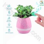 Amazing smart pot